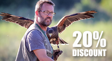 Falconry Course - 20% Winter Discount
